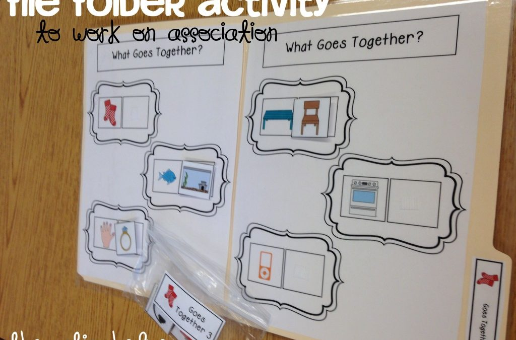 File Folder Activities to Work on Association & Function